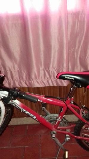 Vendo Bicicleta Corrente Rin 20