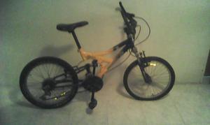 Bicicleta Rin 20 marca Greco