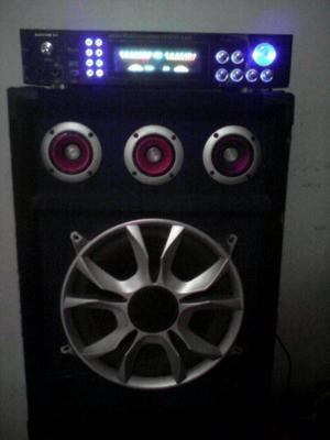 amplificador con Corneta