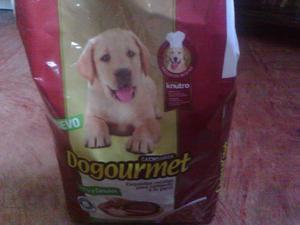Perrarina Dogurmet Cachorro