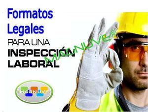 Formatos Word Inspecciones Higiene Seguridad Industrial
