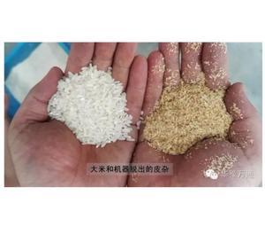 Desgranadora de arroz con buen efecto y poco ruido