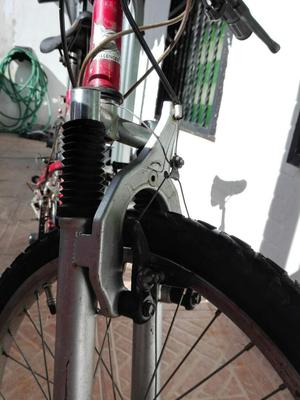 Bicileta Rin 20. Marca Challenger