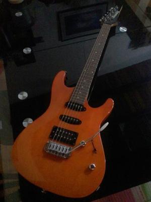 Combo De Guitarra Ibanez Gio
