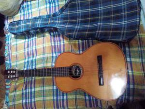 Guitarra Clasica Acustica Brasil Giannini