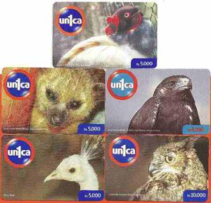 Set De Tarjetas Unica Fauna Silvestre 5 Pz.