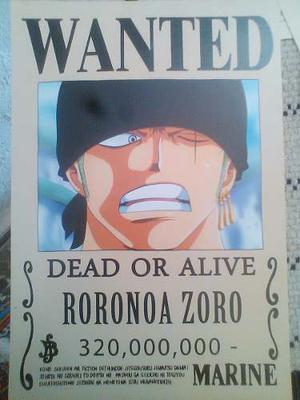 One Piece Se Busca Mini Afiche Papel Glace Texturizado