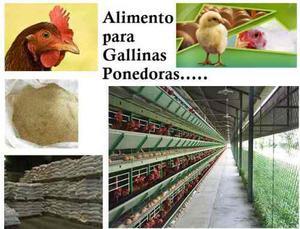 Se Vende Gallinas Ponedoras Y Alimento A Granel