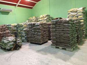 Semillas De Pasto Para Ganado Garantizadas Y Certificadas