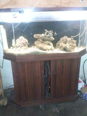 Peceras o acuario nuevos con mueble tapa y lampara posot for Mueble acuario