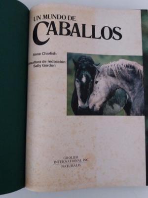 Libro ¨un Mundo De Caballos¨ Por Alwin Schockemohle