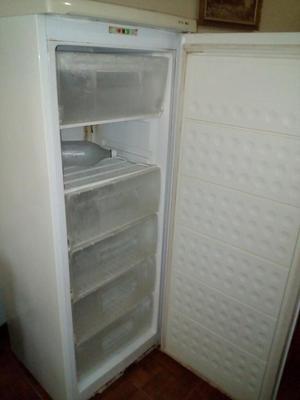 Congelador Tipo Nevera