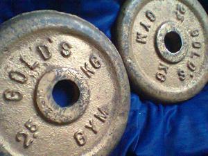 discos de pesas dorados gold gym