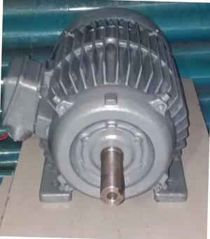Motor Trifasico 18 Hp  RPM