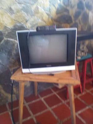 Televisor 21 Pulgadas Samsung Pantalla Plana