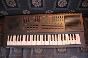 Teclado Sintetizador Yamaha Portalsound Pss 460