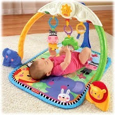 Gimnasio Fisher Price Baby Gym Usado En Perfecto Estado Ofer
