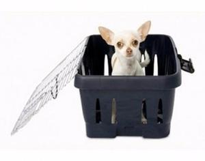 Kennel Petmate Viaje En Cabina, 42 X 29 X 20 Cms,