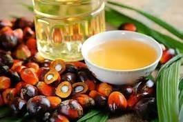 Aceite Palma Para Uso Cosmetico