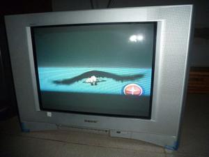 Televisor Sony Wega 21 Pulgadas. Oferta!