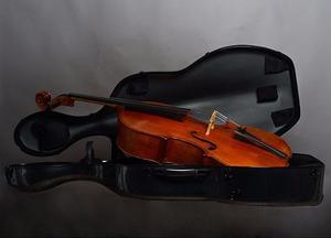 Vendo Violonchelo Paganini 3/4 En Perfecto Estado Oferta