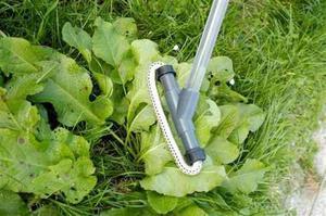 Dosificador De Herbicida Glifosan Cultivo Jardin Invernadero