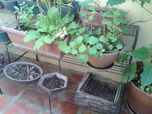 Escalera Jardinera Repisa Para Plantas, Jardin, Hierro