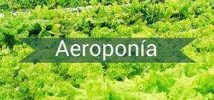 Kit Completo Aeroponia Futuro Hidroponia Pasado