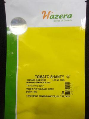 Semillas De Tomate Shanty (hazera)