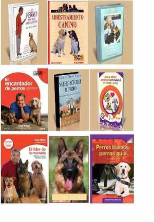 Libros Pdf Perros Gatos Peces Y Canarios
