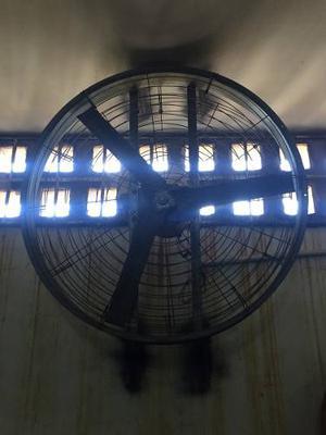 Ventilador Para Galpón De Pollos Nuevos En Caja