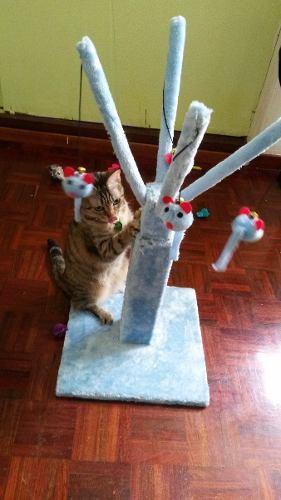 Juguete Rascador Arañador Para Gatos Importado, Divertido