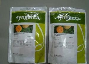 Semillas De Melon Ovation Sygenta