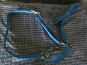 Jáquima Para Toro Con Cadena Azul (nailon)