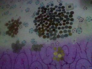 Vendo Mi Bella Coleccion De Monedas Antiguas Extranjeras