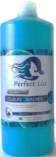 Cirugia Capilar Células Madres 500ml Solo Perfect Liss