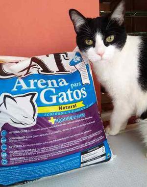 Arena Para Gatos Leon's Cat De 7 Kg (lecho Sanitario)