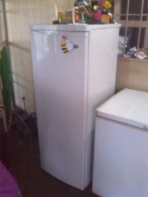 Vendo Nevera Congelador Frigilux En Buen Estado..!