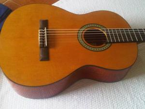 Guitarra Clásica Acústica Ibanez