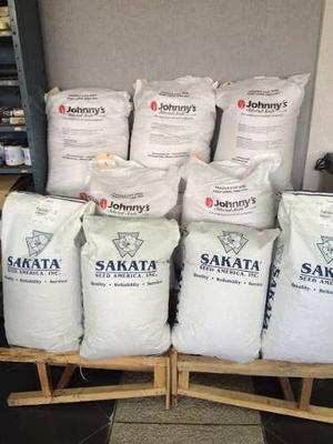 Semillas De Cilantro Santo Sakata De 25 Libras