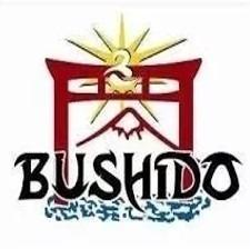 Karategi Bushido Master Gi Talla 3 / 1,6m
