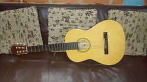 Guitarra Acustica Marca Palmer