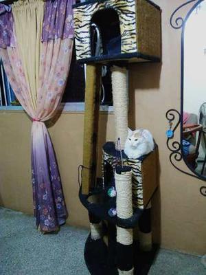Arbol Rascador Para Gatos