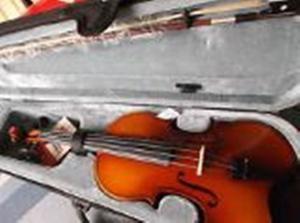 Violin Stagg Como Nuevo Solo En Verdes..120