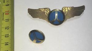Insignia Alas De Aviación Y Pin De Gorra Rockwell