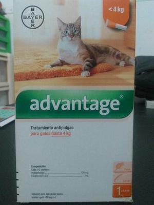Pipeta Advantage Para Gatos Hasta 4 Kg