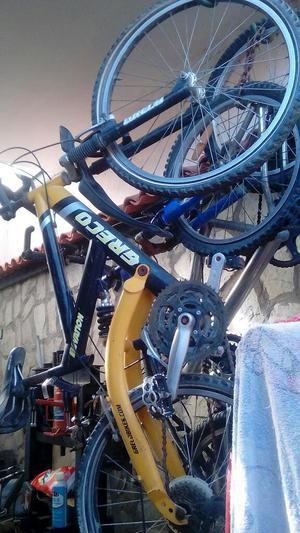 Bicicleta Greco Rin 24