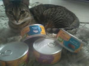 Friskie _ Comida Para Gatos Tipo Pate (importada)