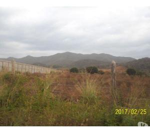 VENDO 1 HECTAREA DE TERRENO (10.000 MTS). VIA CAIGUA. BNA