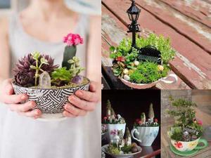 Ebook Diseño Y Construccion De Un Jardin En Miniatura